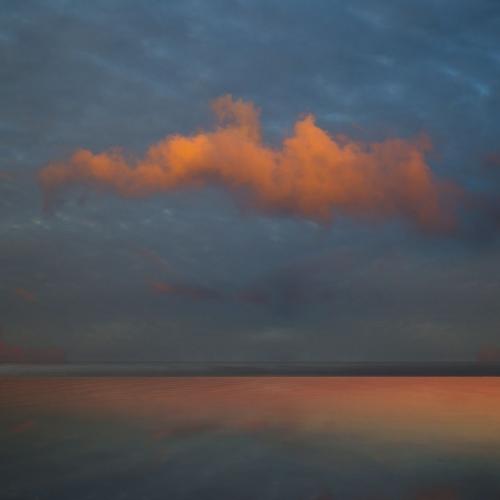 Saskia Boelsums Landscape43.jpg