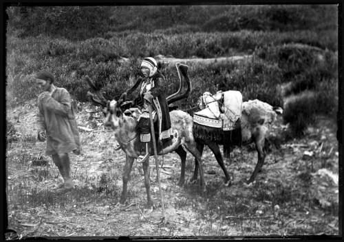 Waldemar Jochelson  Man leading Tungus (Evenki) mother and cradle on reindeer back, Siberia, 1901.jpg