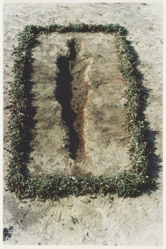 ana mendieta-earth-work-3.jpg
