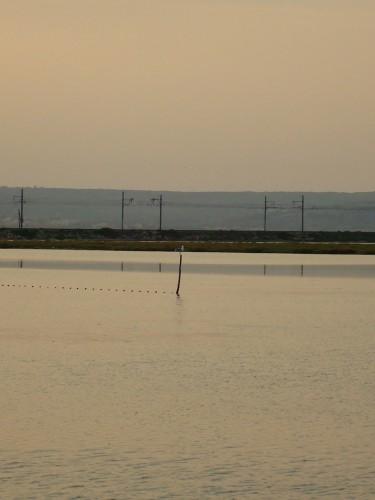 Lignes d'horizon.JPG