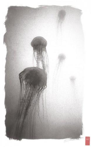 Ryuijie K-135 Sea Nettles.jpg