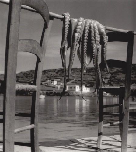 Herbert List_Octopus Corfu 1938.jpg