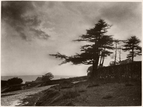 Frank Meadow Sutcliffe  Whitby, 1880s.jpg