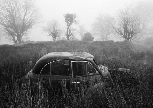 Martin parr IRELAND. County Roscommon. Arigna. Abandoned Morris Minors. From 'A Fair Day'. 1980-1983._n.jpg