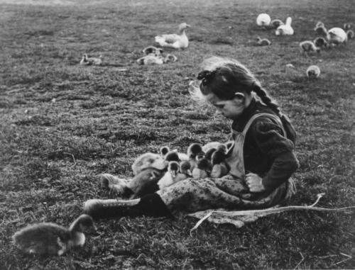 André Kertész Hongrie 1918.jpg