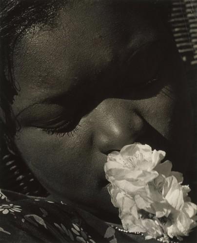 Consuelo Kanaga (1894-1978) Frances with a flower 1930.jpg