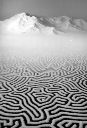 motoi yamamoto -labyrinthe.jpg