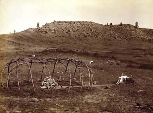 Edward S. Curtis 1910 Cheyenne Sweat Lodge Frame..jpg