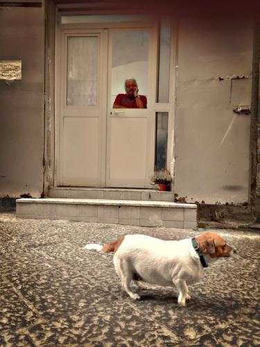 Feggari Xouw Naples.jpg
