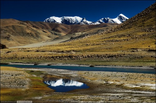 dima chatrov Tibet.jpg