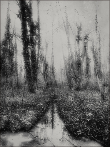 Etienne Cabran Silent river0.jpg