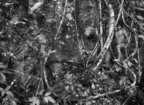 Sebastião Salgado les Awá Amazonie Brésil 9e.jpg