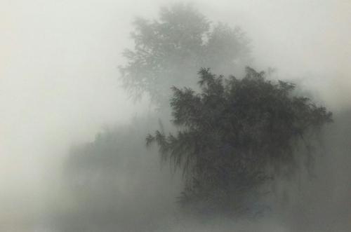Kibong Rhee-09.jpg