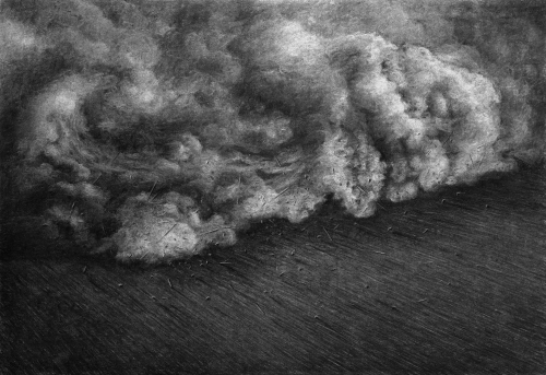 Levi van Veluw The Collapse of Cohesion Cloud 2014.jpg