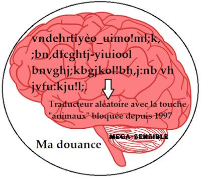 cerveau 2.png