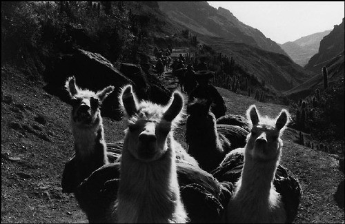 sergio larrain the inca empire.jpg