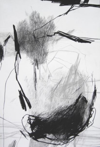 Laurence Garnesson. serie_approches_-_12_06_2011_-_dessin_110x75_cm.jpg