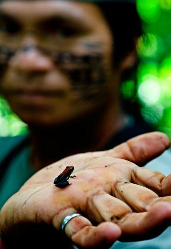 James Morgan Ashuar Amazonie.jpg