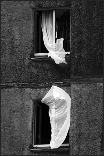 Anna Pronin.jpg