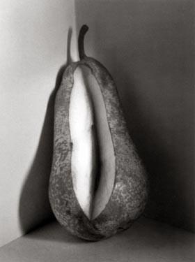 flor garduno pera, suisse, 1998.jpg