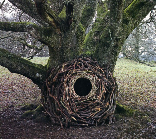 Andy Goldsworthy-10.jpg