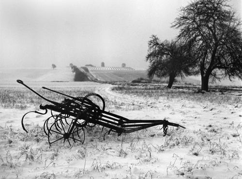 Sabine-Weiss  Ile-de-France_-1951-_.jpg