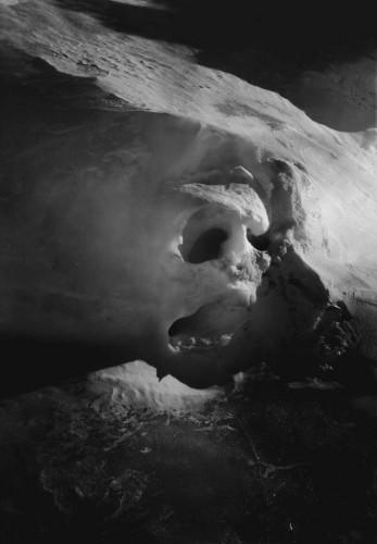 Joyce Campbell Ice Ghoul Antartica 2006.jpg