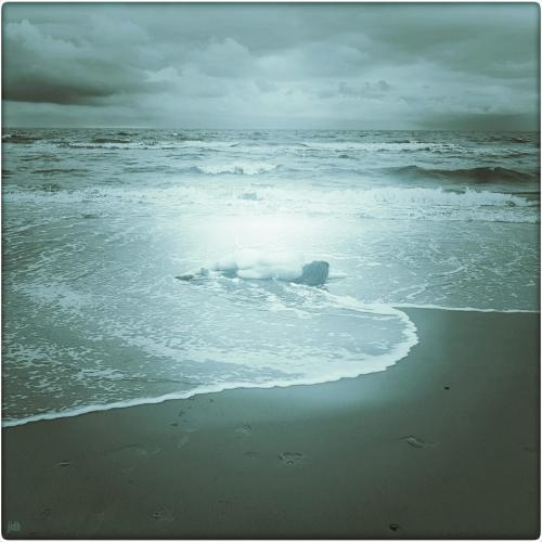 Judith-in-den-bosch_breaking-the-waves.jpg