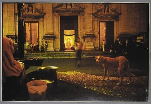 Miguel Rio Branco, PELOURINHO, NOCTURNE WITH DOG, 1979,.Jpeg