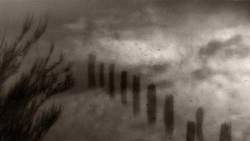 douglas ethridge pilings.jpg