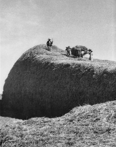 lola alvarez bravo  Los almiares 1944.jpg