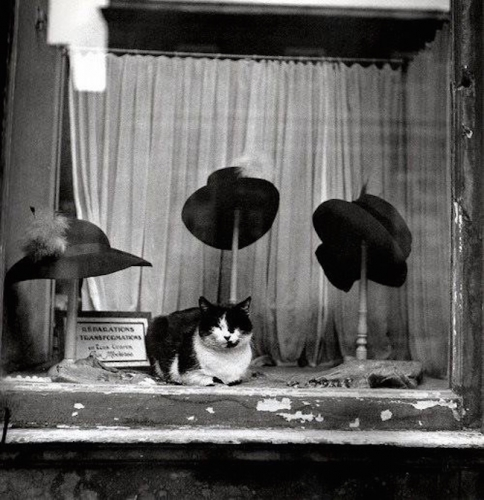 Willy Ronis 8_I.jpg