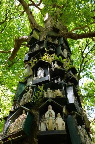 Le Chêne à la Vierge  Ille-et-Vilaine, entre La Guerche-de-Bretagne et Rannée 2.jpg