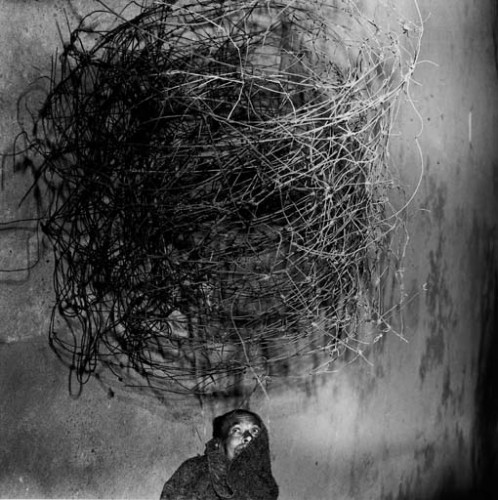 roger ballen shadow chamber twirling-wires-2001.jpg