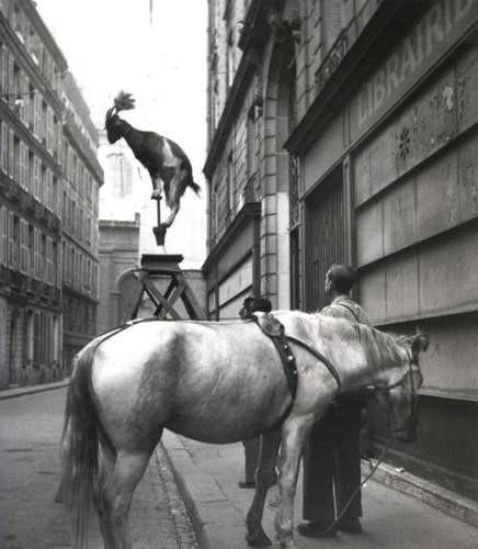 edouard-boubat-1923-1999-rue-servandoni-paris-1947-1242126286408254.jpg