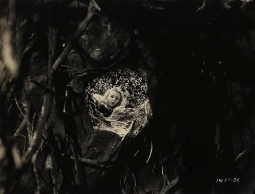 Charlotte Henry as Alice Norman mc leod 1933.jpg