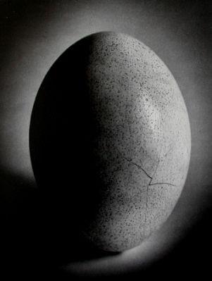 Edward Dimsdale egg.jpg