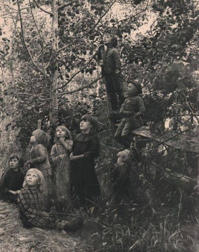 John Dumont Listening to the birds photogravure 1892.jpg