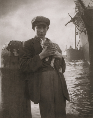 harold cazneaux the ship s cat sydney circa 1912 .png