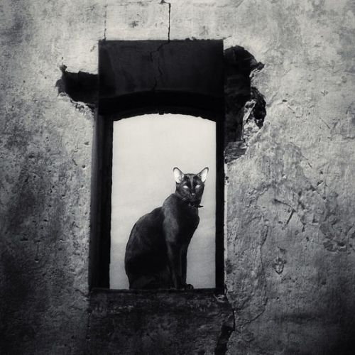 Kasia Derwinska.jpg