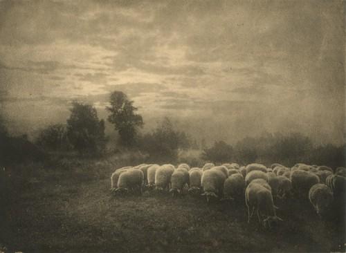 Leonard_Misonne 1905.jpg