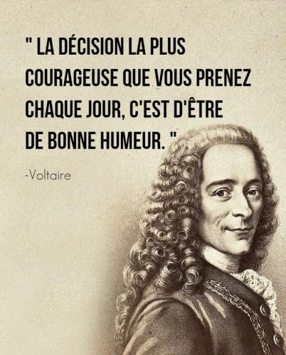 Voltaire_n.jpg
