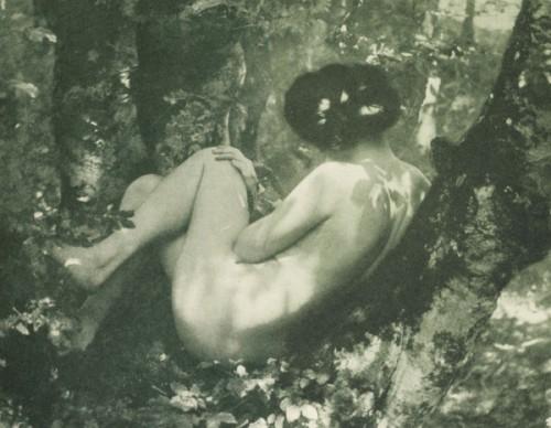 Dr_ Felix Muhr Weiblicher Akt 1907.jpg