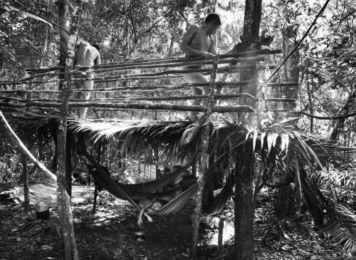 Sebastião Salgado les Awá Amazonie Brésil 4.jpg
