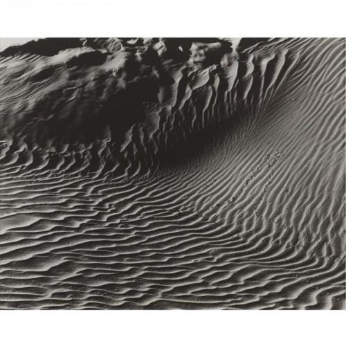 edward-weston-dunes-oceano.jpg