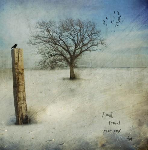 jamy heiden i will travel near-and-far.jpg