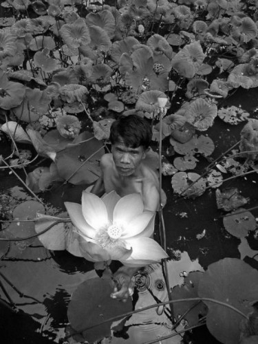Aimery Joëssel- Gardener, 2011.jpg
