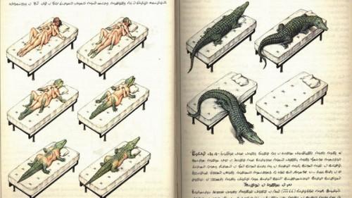 codex_seraphinianus_9799.jpg