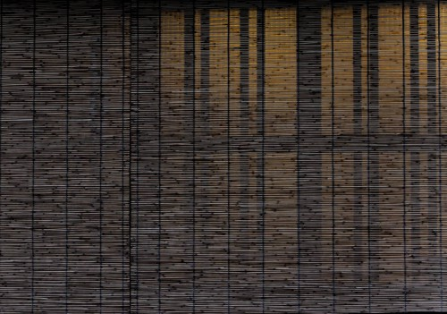 Raphaële colombi Kyoto Japon .jpg