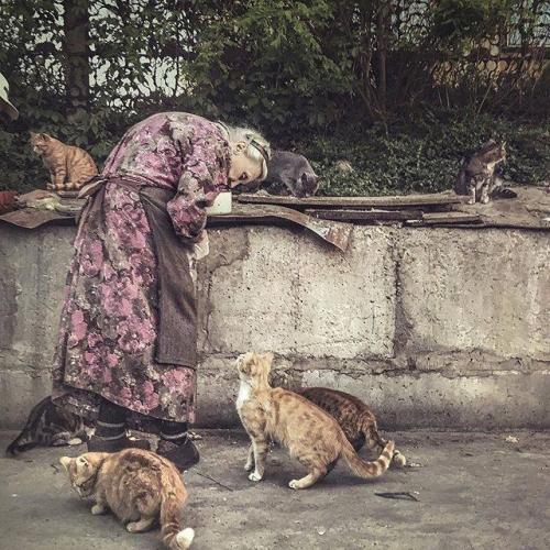 Dmitrij Markov.jpg